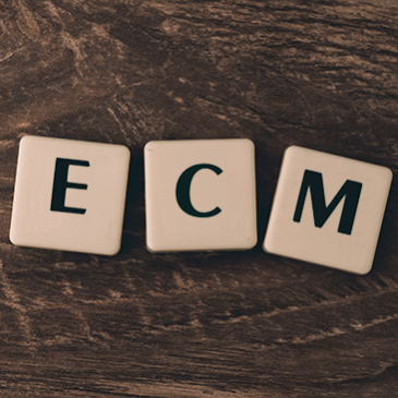 Il Sistema di Aggiornamento Professionale ECM: Presente e Futuro