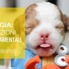 Medical Evidence-Etologia-Alterazioni-Comportamenti-Cani