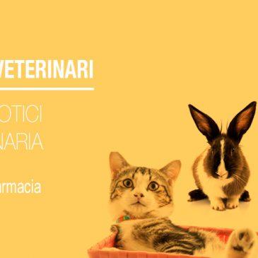 Farmaci Veterinari: Gli Antibiotici in Veterinaria